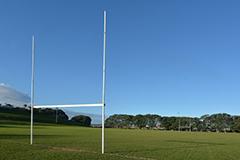 ニュージーランドのワーキングホリデー制度