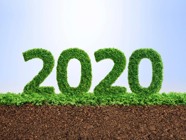 年度 いつ 2020